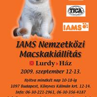 Következő kiállítás: 2009. szeptember 12-13. Lurdy ház
