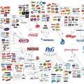 TŐKEKONCENTRÁCIÓ - Az egészséges, élhető és fenntartható világ kialakulásának egyik nagy gátja