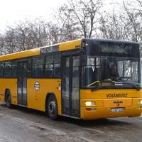 A nagy Bucka busz múltja és jelene, de lesz-e jövője?