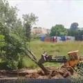 Szigetszentmiklós Lakihegy: Az engedély nélküli fapusztító szabad garázdálkodása mellett a lakosok bontsanak házakat?