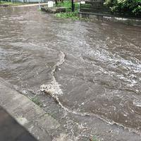 57 km-nyi csapadékvíz hálózatot kezel az ÉCSVCS Kft saját bevallása szerint Szigetszentmiklóson, ahol csapadékvíz elvezetés sincsen!