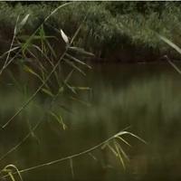 Kormányzati segítséget kérünk: Magyarország 30 legszennyezettebb területének egyike, a Bucka-tó esetében a környező talajvízek bemérésére különös tekintettel a súlyosan egészségkárosító, rákkeltő komponensekre