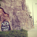 Barlangi troll figyel a Gellért-hegynél - GG