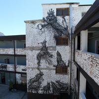DAL új falfestménye Fokvárosban - Moon Hallucinogen