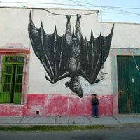 ROA új falfestményei Mexikóban
