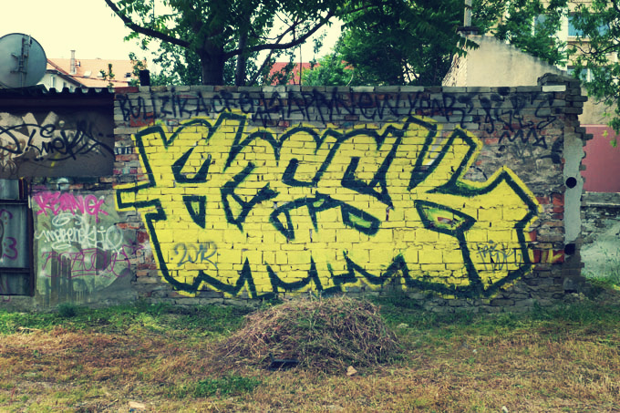 falfestmeny-koki-08.jpg
