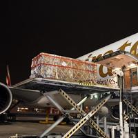 Retúrjegyet váltott a felbecsülhetetlen értékű, 2000 éves utas az Emirates gépére!