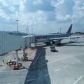 Megérkezett Budapestre az első Qatar A330-as repülőgéppel teljesített járat!