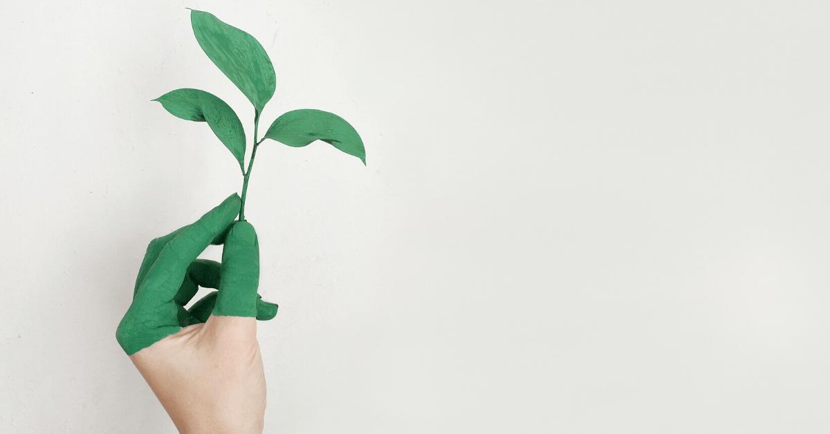kornyezetvedelem-kezdeti-lepesek-bukdacsolo-kornyezetvedo-blog.png