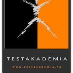 Testakadémia Orange - HSK
