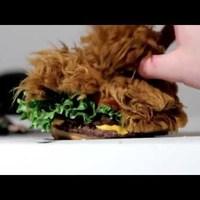 A Chewbacca burger