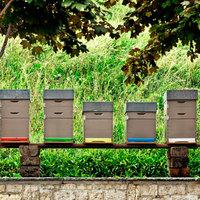 Rárepültek a méhek a luxusra