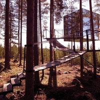 Luxuskockát minden erdőbe!