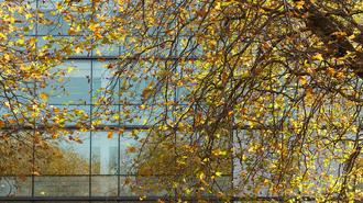 A 29 legkirályabb őszi dolgozószoba