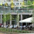 Az 5+1 legjobb business lunch étterem a városban - 1. rész