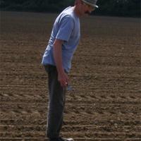 Kőeszközök a kukoricásban