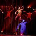 Cirque du Soleil Varekai Budapest - beszámoló