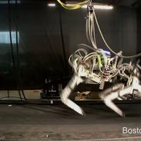 28,9 km/h-val fut a robotállat