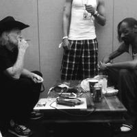Zene: Snoop Dogg + Willie Nelson