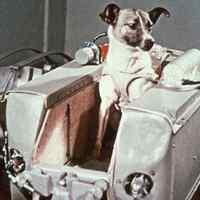 Lajka az űrben – 1957. november 3.