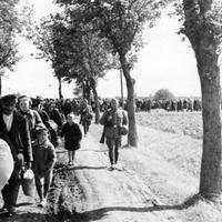 A hazájukból elűzött németek