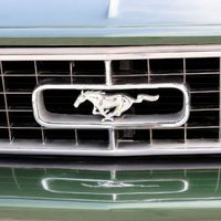 Mustangok fogságban