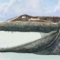 Carcosa bestiárium: A békakirály