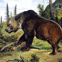 Carcosa bestiárium: A szörnymedve