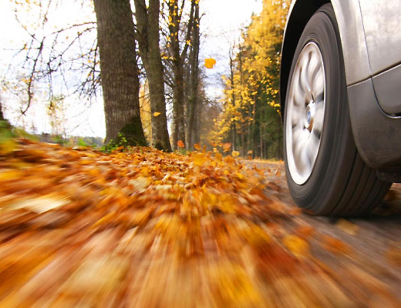10 tanács, hogy az autóddal minden rendben legyen ősszel!