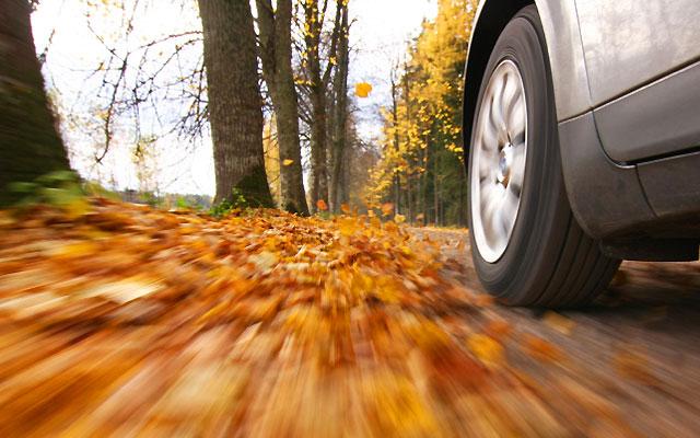 autumn-driving.jpg