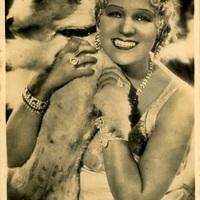 Tíz kép - énekesek és kutyák