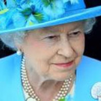 Royal insight - Királyi Kuriózumok