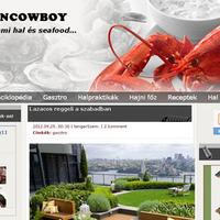 Bemutatkoznak a PS blogok: Oceancowboy