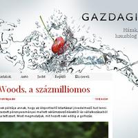 Bemutatkoznak a PS blogok: Gazdagisztán