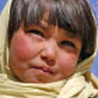 Kapibara-mozi: ha még nem láttad, most nézd meg!