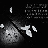 FEM-X: SZABÓ IMOLA JULIANNA IV.