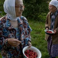 Az Alehovcsinai nővérek - Nadja Szablin képei
