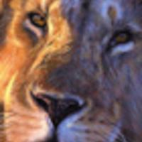 ICA-mesék: Az oroszlán és a delfin