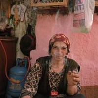 Orbánné Vica esete a plágiummal