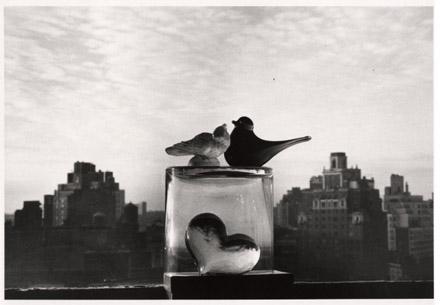 AndreKertesz_glass_birds_of_New_York_1978.jpg