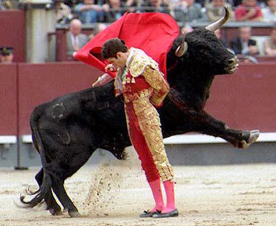 quiero-ser-torero-telemadrid.jpg