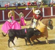 Spain_Fuenjirola_Novillada_28april07_picador_bull__c__LACS.jpg