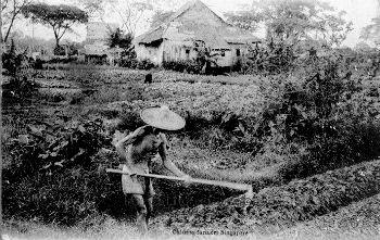 chinese farmers 1904a.jpg