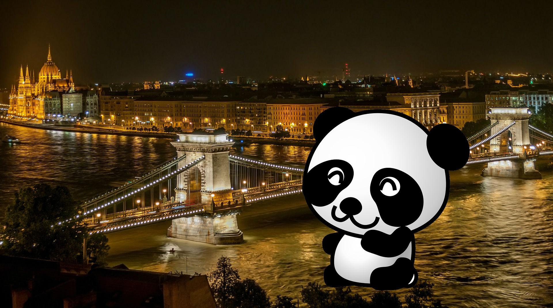 budapest-panda-boss.jpg