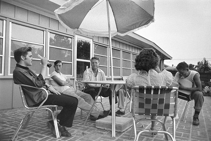 Elvis-relaxes-on-the-back-007.jpg