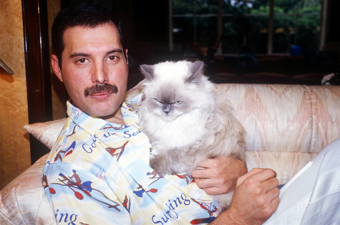 freddie-with-cat.jpg
