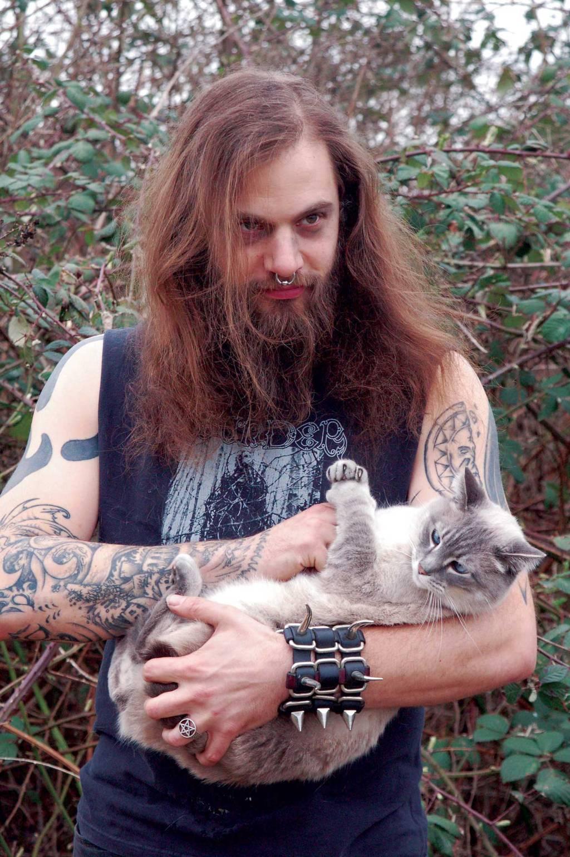 metal cats 6.jpg
