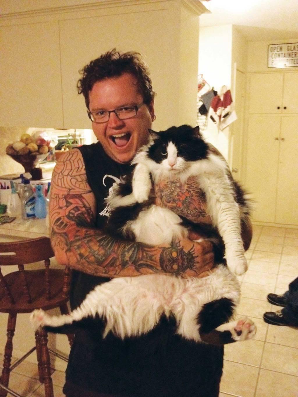 metal cats 9.jpg