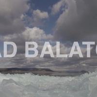 A Balaton, ahogy még nem láttad - Természetfilmen ismerheted meg az élővilágát!
