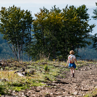 Szarvasbőgés a végtelen erdőben - Ismerd meg a belső Mátrát is!